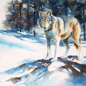 Lone Wolf - Sold